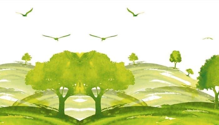 Gestión Ambiental foto 4