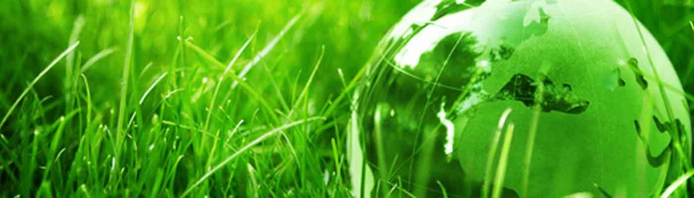 Medio Ambiente foto 18