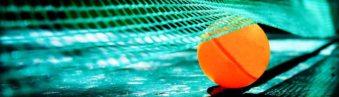 Deportes foto 7