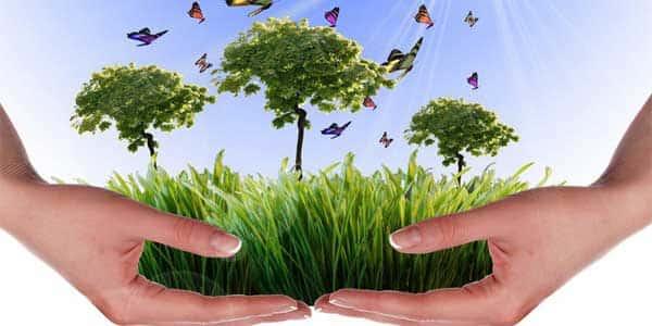 de Medio Ambiente. Conoce la normativa aplicable, régimen administrativo y documentos técnicos necesarios en materia de ambiente con los cursos en Medio Ambiente.