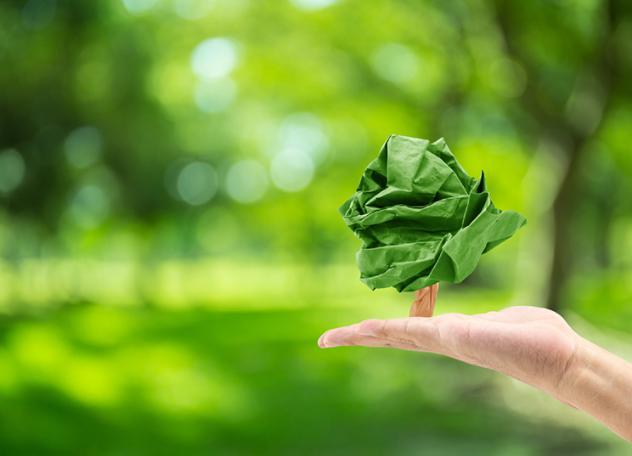 Como ser Educador ambiental