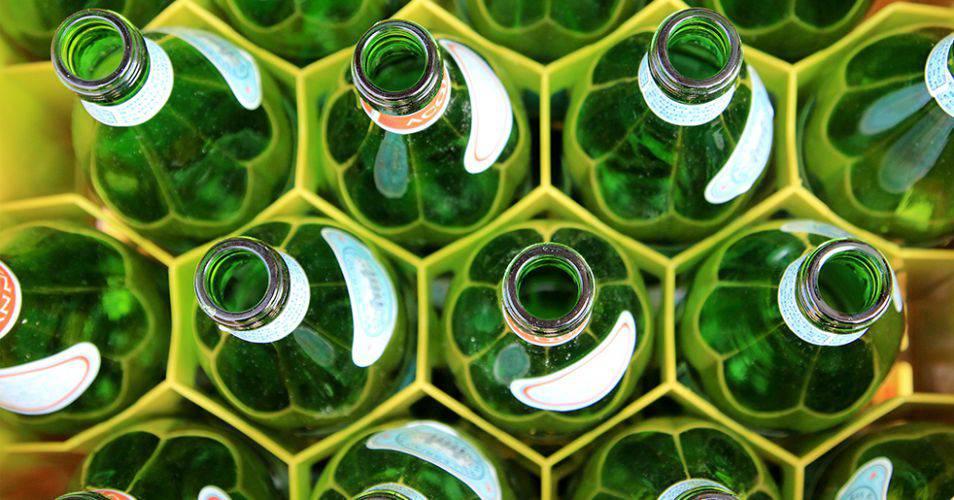 Docente Reciclaje