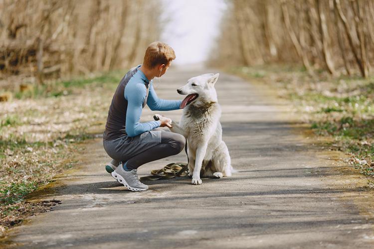 Terapeuta canino