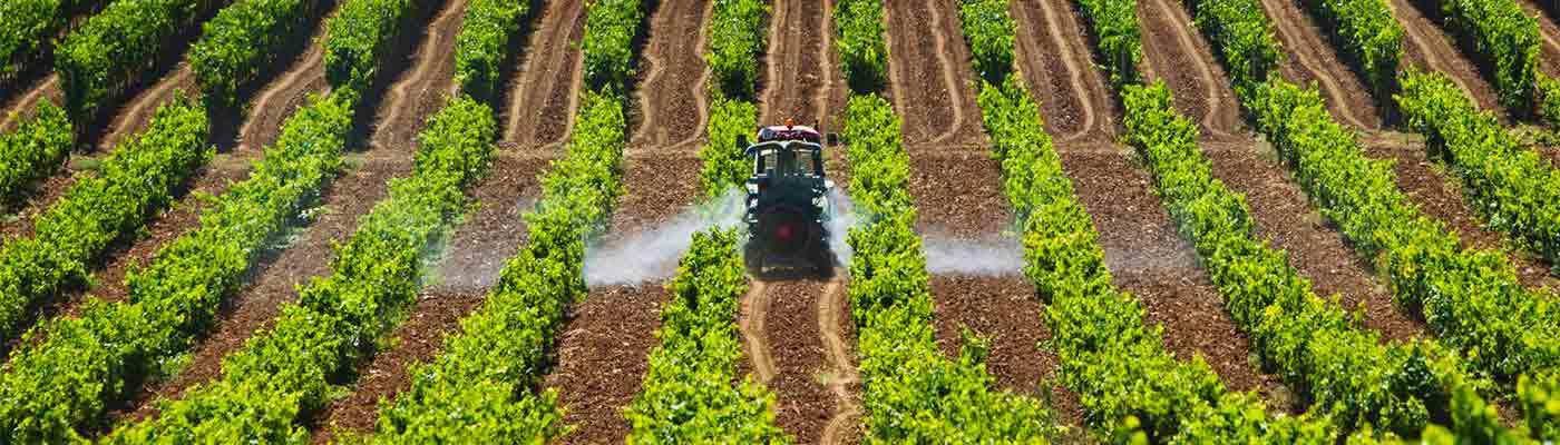 Agricultura foto 3