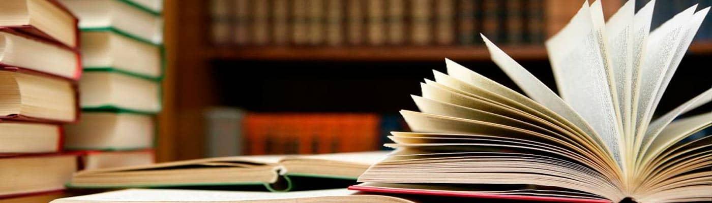 Auxiliar de Bibliotecas foto 4
